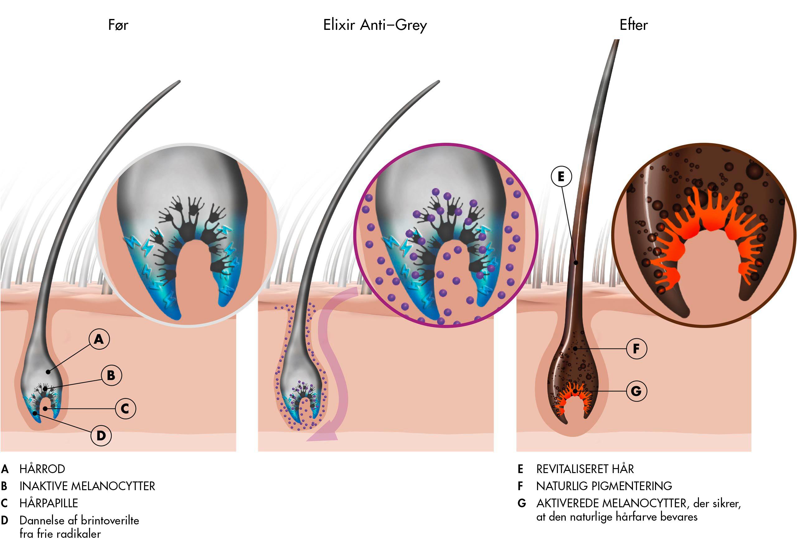 Før og efter anvendelse af Elixir Anti-Grey