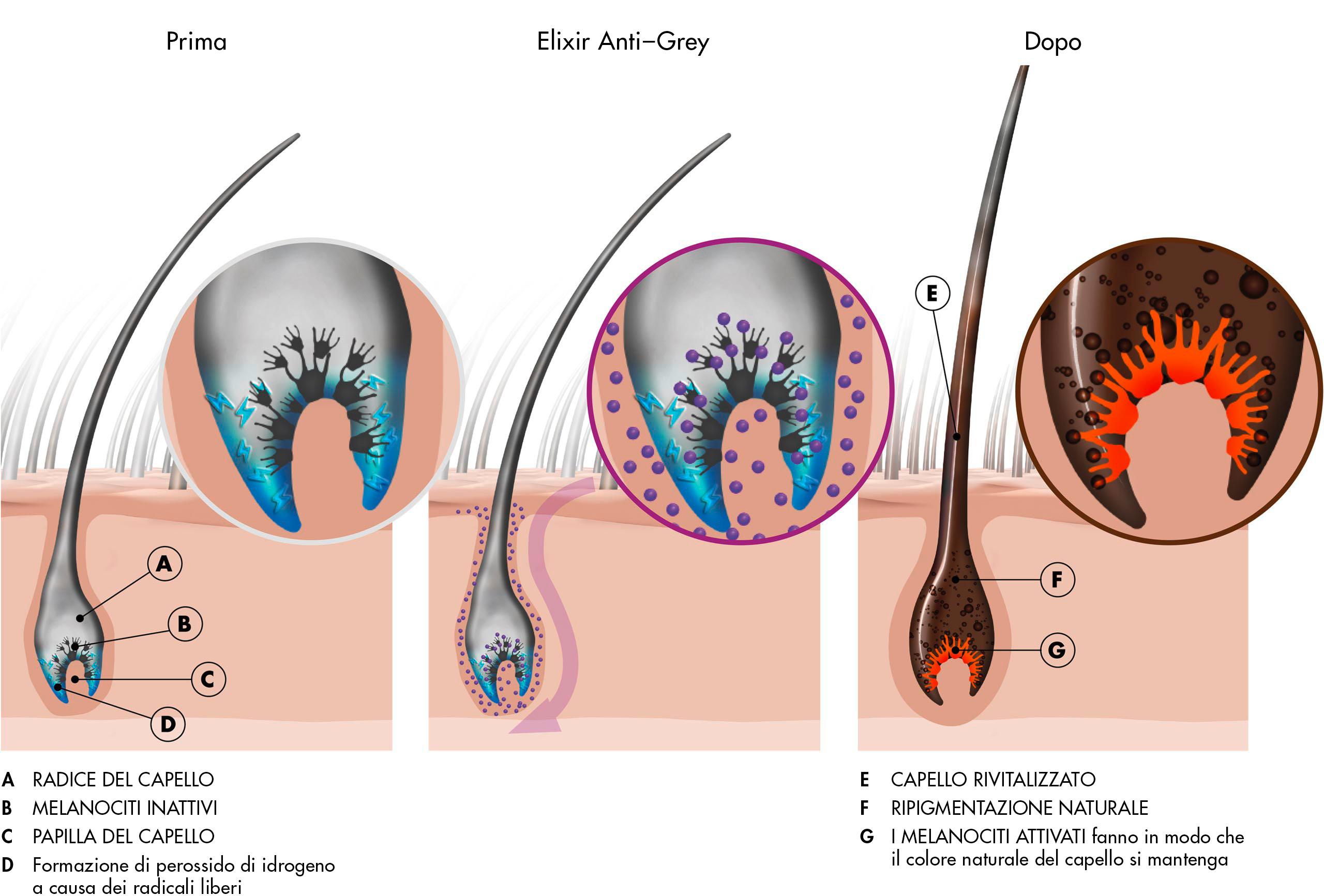 Prima e dopo l'applicazione di Elixir Anti-Grey